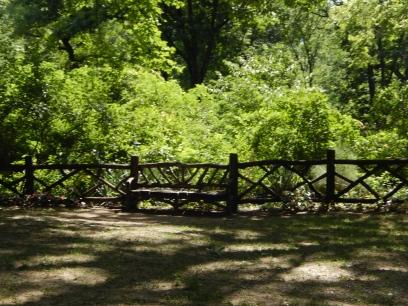 41 Central Park