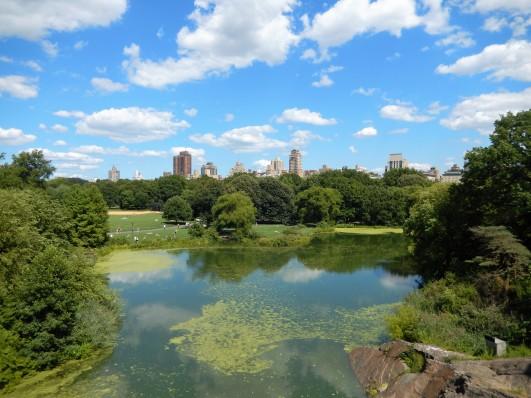 44 Central Park