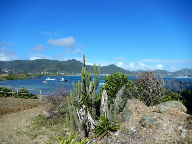 493 St Maarten